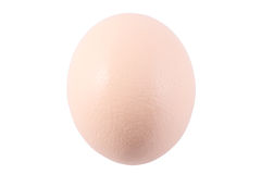 Ostrich egg. On white background Stock Photos