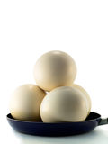 Ostrich eggs Stock Photography