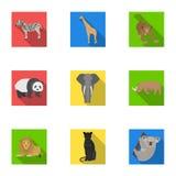 Ostrich emu, crocodile, giraffe, tiger, penguin and other wild animals. Artiodactyla, mammalian predators and animals Royalty Free Stock Images