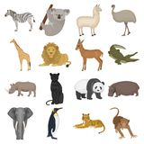 Ostrich emu, crocodile, giraffe, tiger, penguin and other wild animals. Artiodactyla, mammalian predators and animals Stock Photos