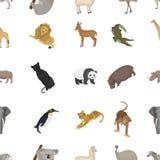 Ostrich emu, crocodile, giraffe, tiger, penguin and other wild animals. Artiodactyla, mammalian predators and animals Stock Images