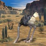ostrich för djur 3d Royaltyfri Bild