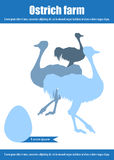 Ostrich farm. Ostrich eggs. Poultry and aviculture. Vector illustration Stock Image