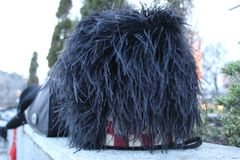 Ostrich Feather Hat stock photography