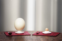 Ostrich and hen eggs in eggholders Stock Photos