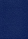 Ostrich leather surface Royalty Free Stock Photos