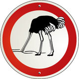 Ostrich to cower Stock Images