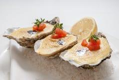 Ostriche con salsa ed il limone sul piatto Fotografia Stock