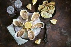 Ostriche fresche del mare su un grande sale marino con il limone Alimento sano, alimento gastronomico, alimento del ristorante fotografia stock