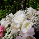 Ostrość białych róż piękny bukiet Fotografia Stock