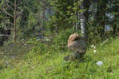 ostrości lensbaby nadplanowego ostrosłupa selekcyjny kamienia wierzchołek Zdjęcia Stock