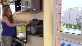 Ostrożnego kobieta w ciąży czysty pył od półki w żywym pokoju w domu zbiory