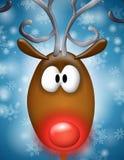 ostrożnie wprowadzać czerwony reniferowy Rudolph Zdjęcie Royalty Free
