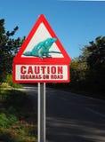 Ostrożność iguany na Drogowym znaku ostrzegawczym zdjęcia stock