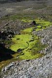 ostro lodowej krajobrazu zdjęcie royalty free