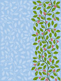 ostrokrzewu kwiecisty wzór Zdjęcia Royalty Free