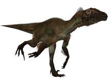 ostrommayorumutahraptor för dinosaur 3d Royaltyfria Bilder