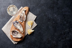 Ostron och vin arkivfoton