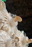 Ostronen plocka svamp, i att växa, hänger lös royaltyfria foton