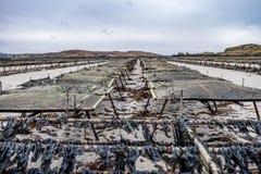Ostronlantbruk och ostronfällor som svävar ingreppspåsar vid Carrickfinn i ståndsmässiga Donegal, Irland fotografering för bildbyråer