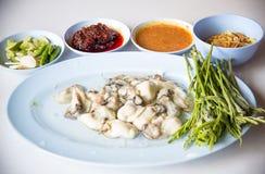 Ostronmat och chilisås, thailändsk mat är ostron med örter eller kryddig sallad för ostron Royaltyfri Fotografi