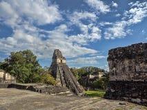 Ostrosłup Jaguar w obywatelu najwięcej znacząco Majskiego miasta Tikal park, Gwatemala obraz stock