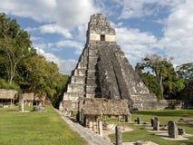 Ostrosłup Jaguar w obywatelu najwięcej znacząco Majskiego miasta Tikal park, Gwatemala obrazy stock