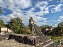 Ostrosłup Jaguar w obywatelu najwięcej znacząco Majskiego miasta Tikal park, Gwatemala zdjęcie royalty free