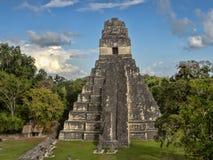 Ostrosłup Jaguar w obywatelu najwięcej znacząco Majskiego miasta Tikal park, Gwatemala zdjęcia stock