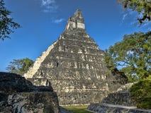 Ostrosłup Jaguar w obywatelu najwięcej znacząco Majskiego miasta Tikal park, Gwatemala fotografia royalty free
