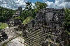 Ostrosłup i świątynia w Tikal parku Zwiedzający przedmiot w Gwatemala z Majskimi świątyniami i ceremoniał ruinami Tikal jest anty zdjęcie royalty free
