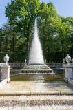 Ostrosłup fontanna w parku nad zielonymi drzewami i niebieskim niebem, Peterhof, St Petersburg Zdjęcie Stock