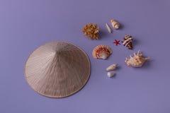 Ostrostożkowy kapelusz i seashells Obraz Stock