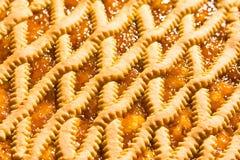 Ostruzione acida, cucina italiana dell'albicocca Immagini Stock Libere da Diritti