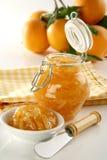Ostruzione arancione casalinga Immagini Stock Libere da Diritti