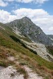 Ostry Rohac mountain peak on Rohace mountain group in Zapadne Tatry mountains in Slovakia royalty free stock photo