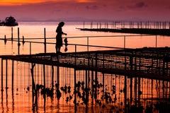 ostrygą jest rolni rybacy utrzymującym sprzedającym Zdjęcia Royalty Free