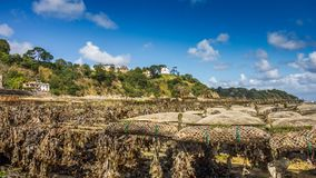 Ostrygi gospodarstwo rolne w Cancale podczas niskiego przyp?ywu fotografia stock