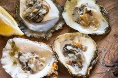 Ostrygi z cytryną na drewnianym talerzu Zdjęcie Royalty Free