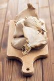 Ostrygowa pieczarka Zdjęcia Stock