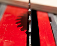 ostrza kółkowy makro- fotografii saw Obrazy Royalty Free