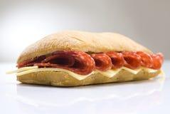 ostsalamismörgås Royaltyfri Foto