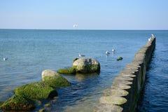 Ostseemeerblick stockbild