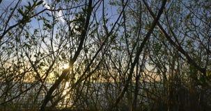 Ostseestrandsonnenuntergang, timelapse 4k stock video