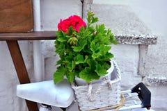 Ostuni, Puglia, Italy stock image
