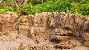 Osunięcie się ziemi glebowa erozja Fotografia Stock