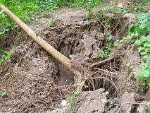 Osunięcie się ziemi i spadać drzewo Fotografia Stock