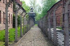 Auschwitz Στοκ εικόνες με δικαίωμα ελεύθερης χρήσης