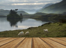 Oszałamiająco góry i jeziora wschodu słońca odbić piękny landsca fotografia royalty free