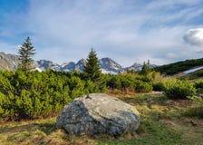 Oszałamiająco krajobraz Tatrzańskie góry, część Karpacki halny łańcuch w wschodnim Europa między Sistani i Polska, fotografia royalty free